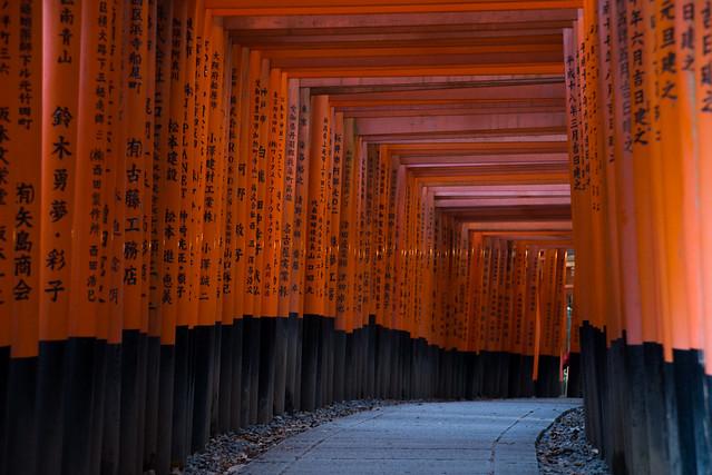 伏見稲荷大社で千本鳥居の撮影