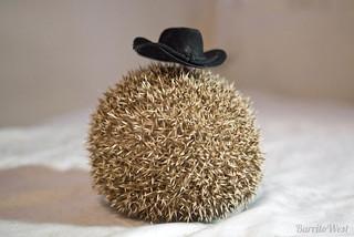Cowboy Hedgehog