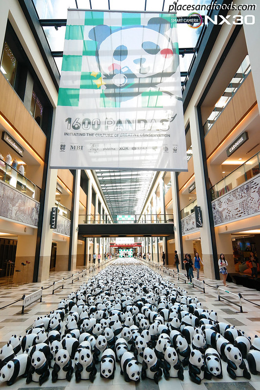 publika 1600 pandas full view vertical