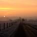 winter sunrise by peet-astn