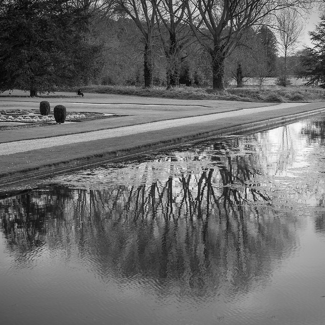 Reflections in the moat