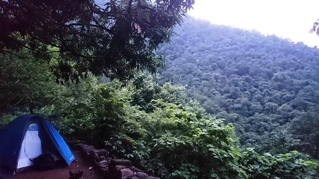 Camping in nallamala Forest