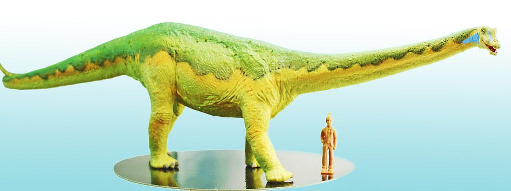 ... Diplodocus ( 1 40 )  d63a5fa7293a