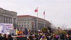 National March Against Police Violence Washington DC USA 50308