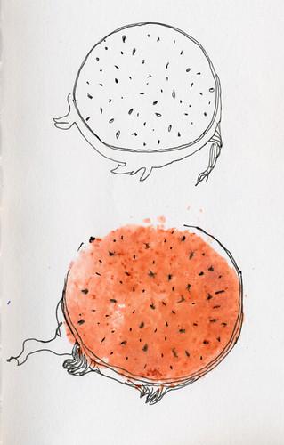 September 2014: Dragon Fruit