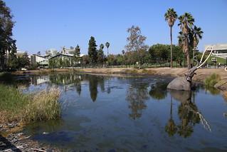 La Brea Tar Pits, LA.  California.