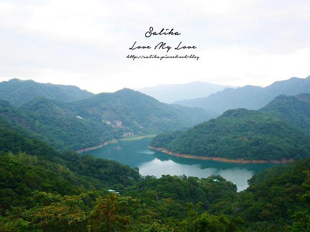 新北石碇景點千島湖八卦茶園 (2)