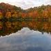 Catfish Pond Stone Mountain Park by John Rosemeyer