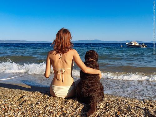 sea greece природа собака море malaki дружба счастье животное география романтика пара лабрадор греция волос thessaliastereaellada