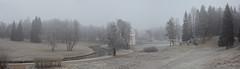 Foggy day. Pavlovsk
