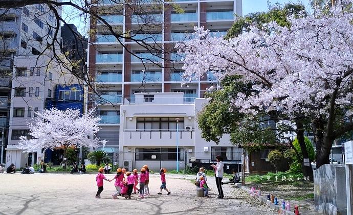 10 大阪賞櫻景點 堀江公園 味處和風亭