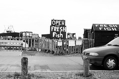 Open for Fresh Fish