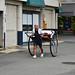 Hagi Rickshaw