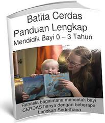 BannerEbookBatitaCerdas1