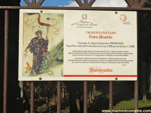 Pompei32_new