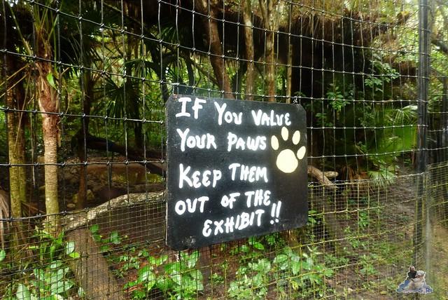 Belize Zoo 19.11.2014 69