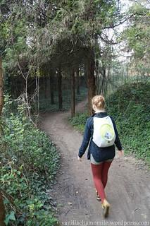 Roaming untrodden paths in Verona