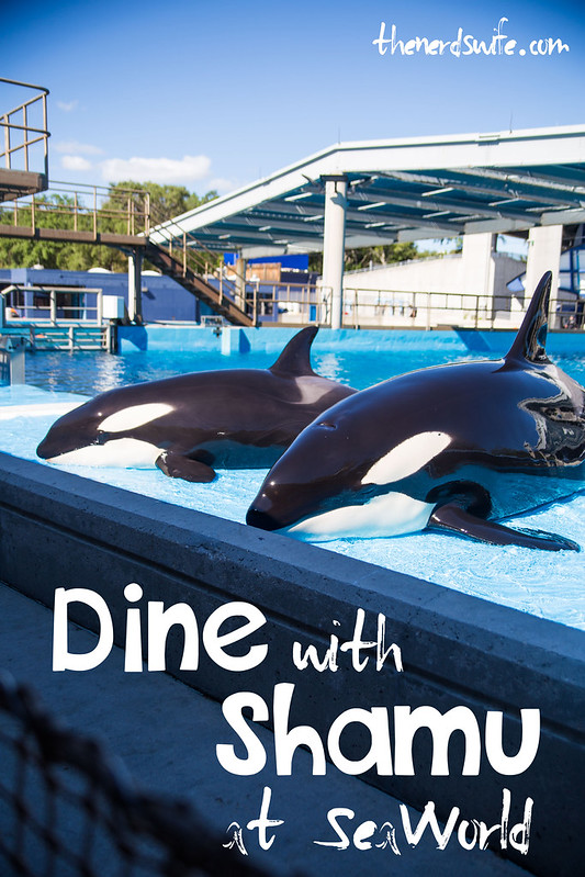 Dine With Shamu at SeaWorld