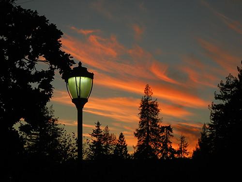 Sunset seen at UC Berkeley Campus