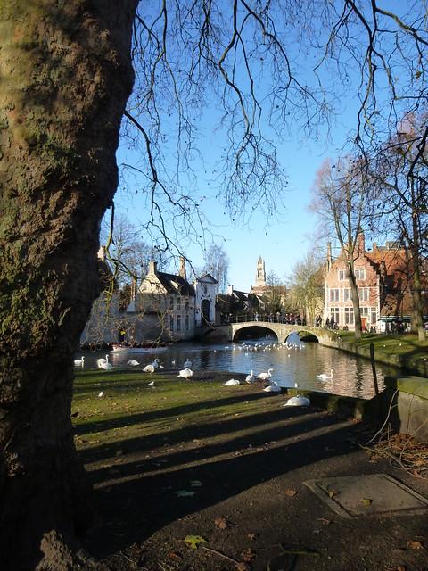 Bruges 2014 (4)
