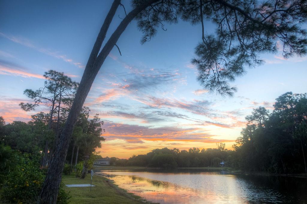 Florida Dawns Forever
