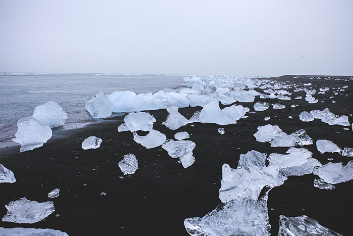 Iceland_Spiegeleule_August2014 040