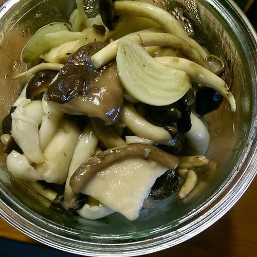 20150109  凱倫常備菜 麻油漬鮮菇 好簡單又好好吃啊!(轉圈圈)  #葛蘿的餐桌  #凱倫的常備菜