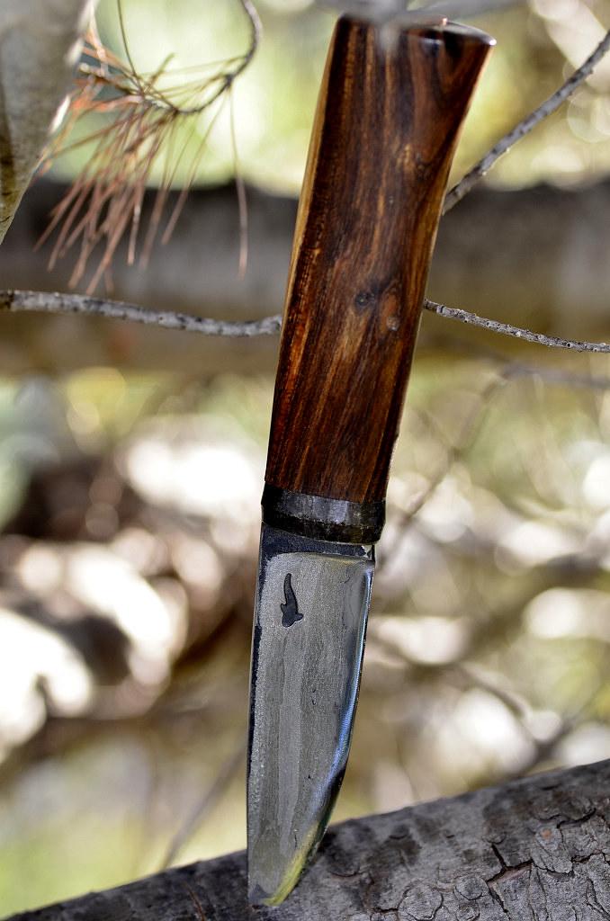 Des traces de couteaux dans les bois 16265082595_943b28a588_b
