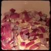 #CucinaDelloZio - #Homemade #SugoDiPomodoro #TomatoSauce - onions and garlic