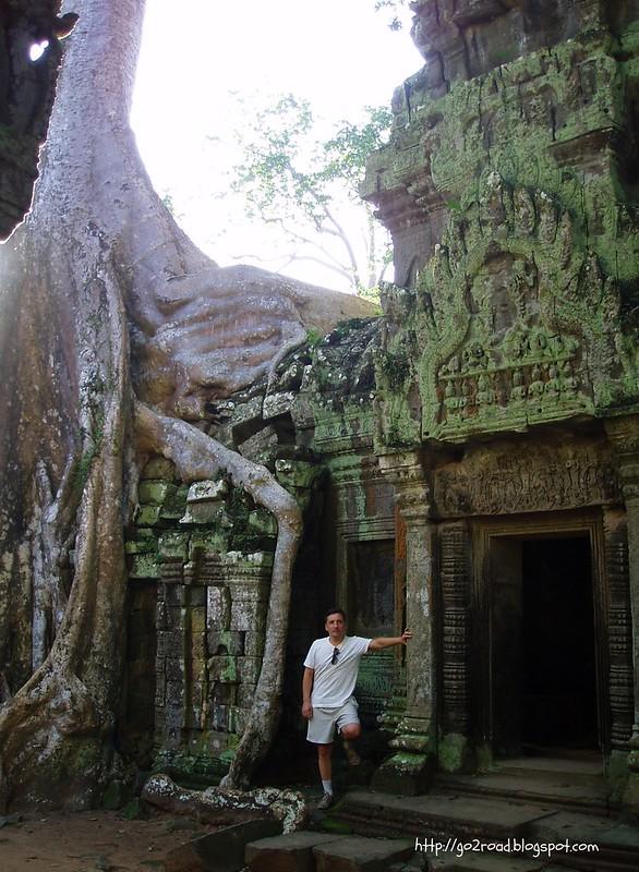 Камбоджа, храм Та Пром в Ангкоре