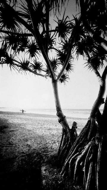 Surfer, Gold Coast