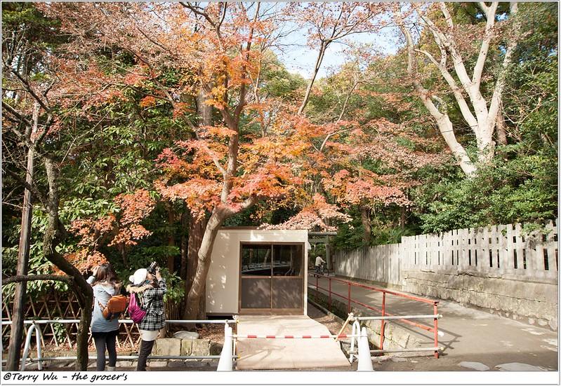 _2013-12 鎌倉八幡宮-20