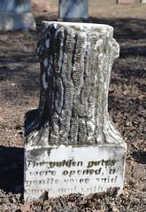 The Golden Gates were opened - Woodmen of the World gravestone