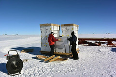 Building the air force pallets of ice cores