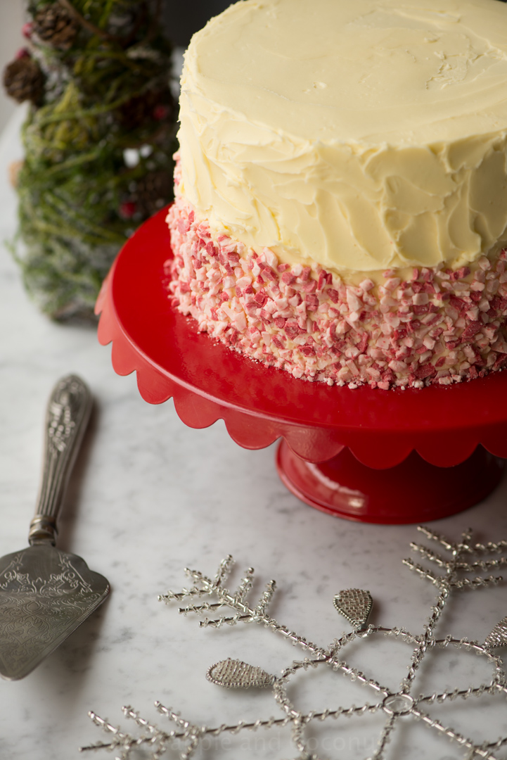 Christmas Recipes Guest Post for Cost Plus World Market www.pineappleandcoconut.com
