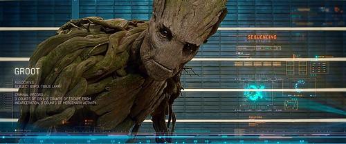 01 Groot 2