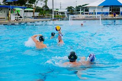 swimming(0.0), swimmer(0.0), water & ball sports(1.0), water polo(1.0), swimming pool(1.0), sports(1.0), recreation(1.0), outdoor recreation(1.0), leisure(1.0), team sport(1.0), water sport(1.0), ball game(1.0),