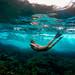 Underwater in Hawaii