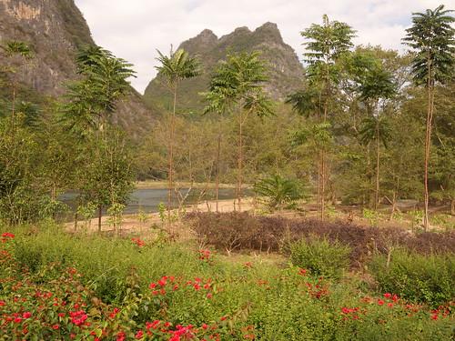 Yangshuo Balade sur la rivière Li