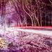 Night Drive by jamessheehy