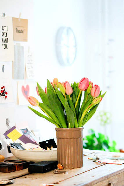 Tulpen @ home sweet home