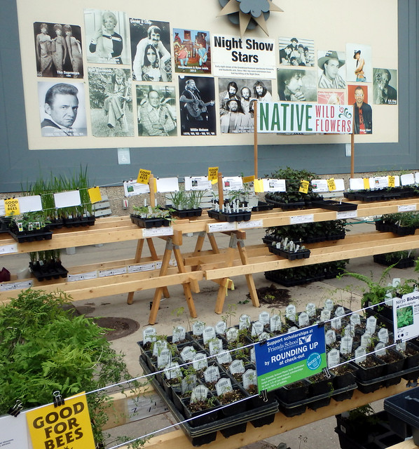 two rows of plants in front of a building highlighting state fair performers