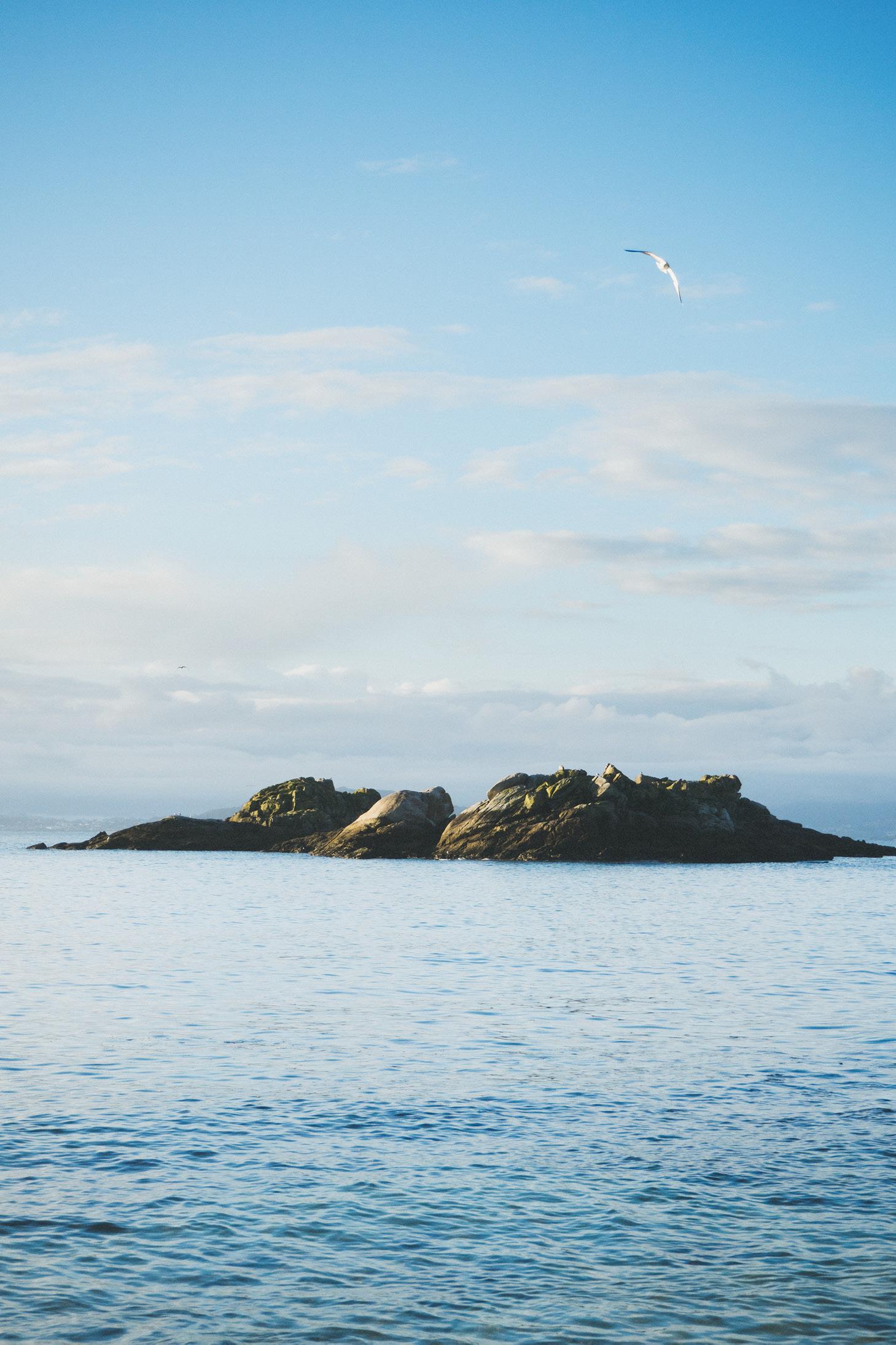 islas_cies51
