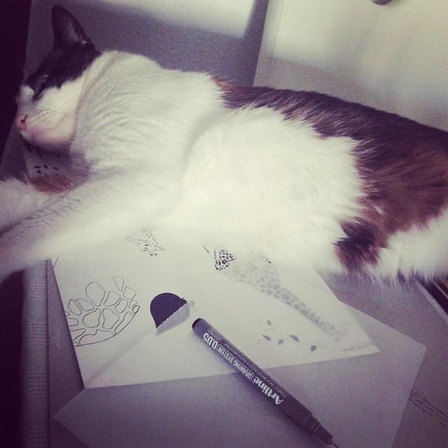Cuando en serio estas concentrado tratando de #dibujar y el #gato no deja <3 #catlover