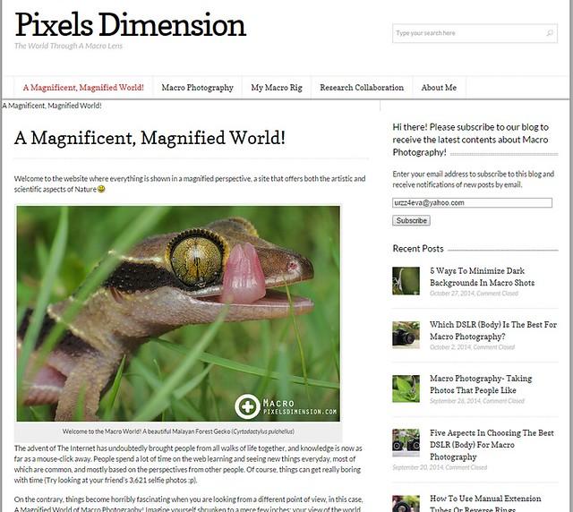 PixelsDimension