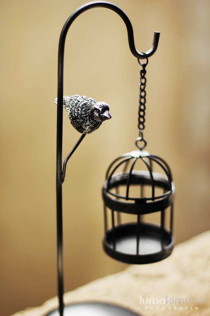 .bird.