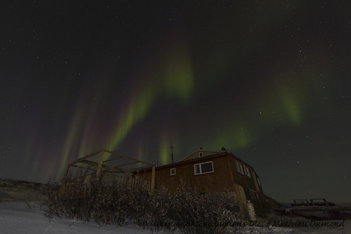 Aurora over the house-8069