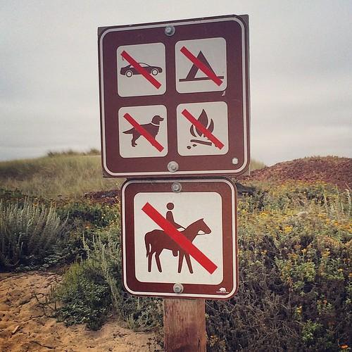 No fun allowed in Santa Cruz