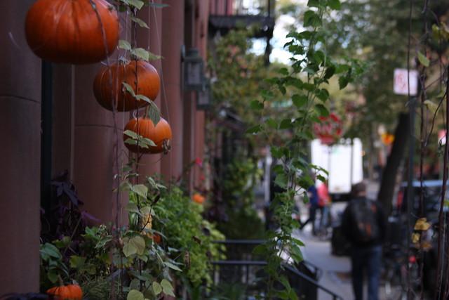 NYC (164)