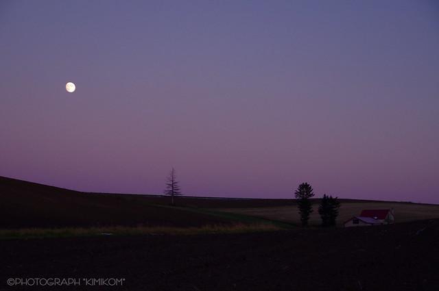 メルヘンの丘。後の十三夜